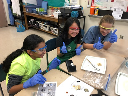 students sitting at desk participating in dissecting a sheep eye