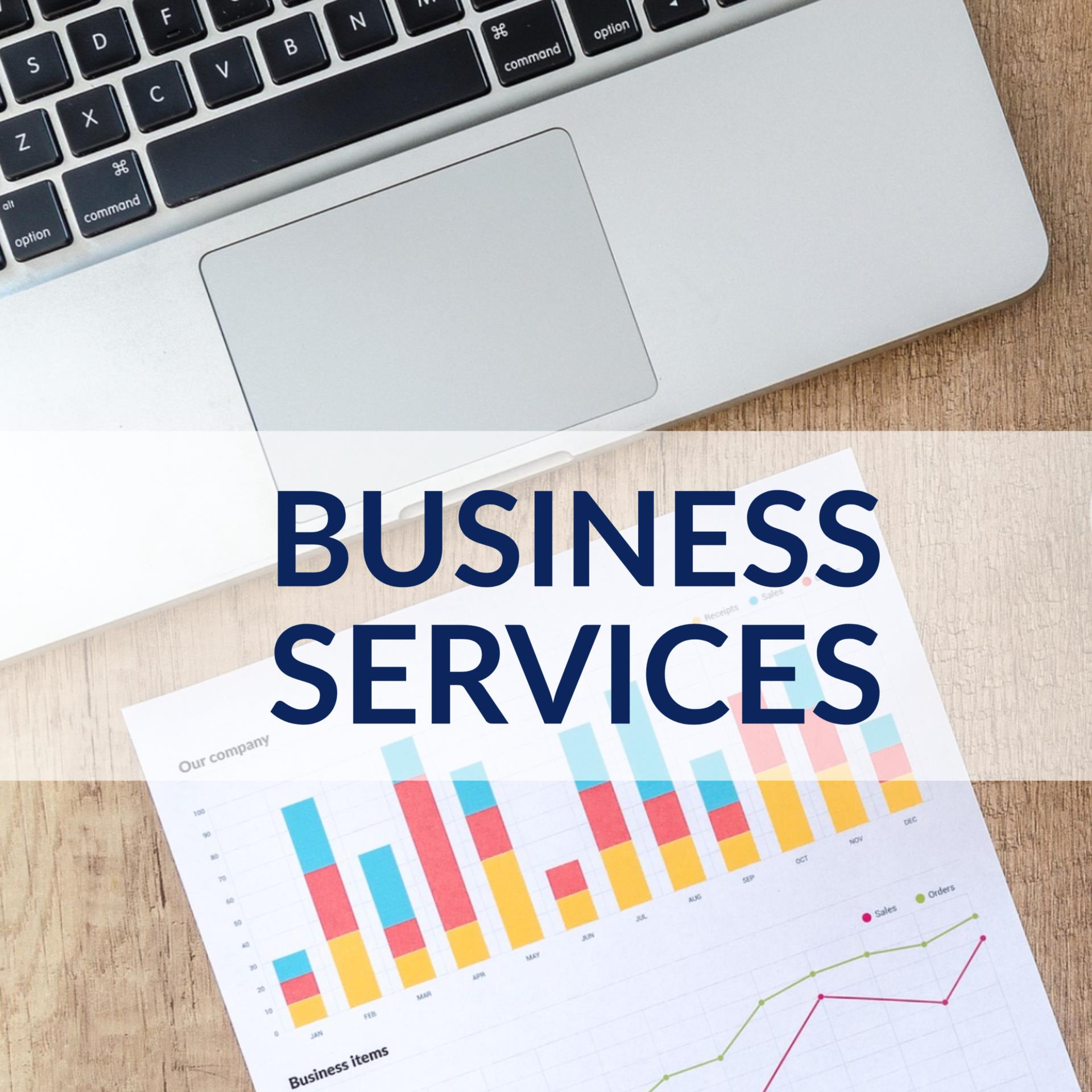 Data Dashboard Business Services