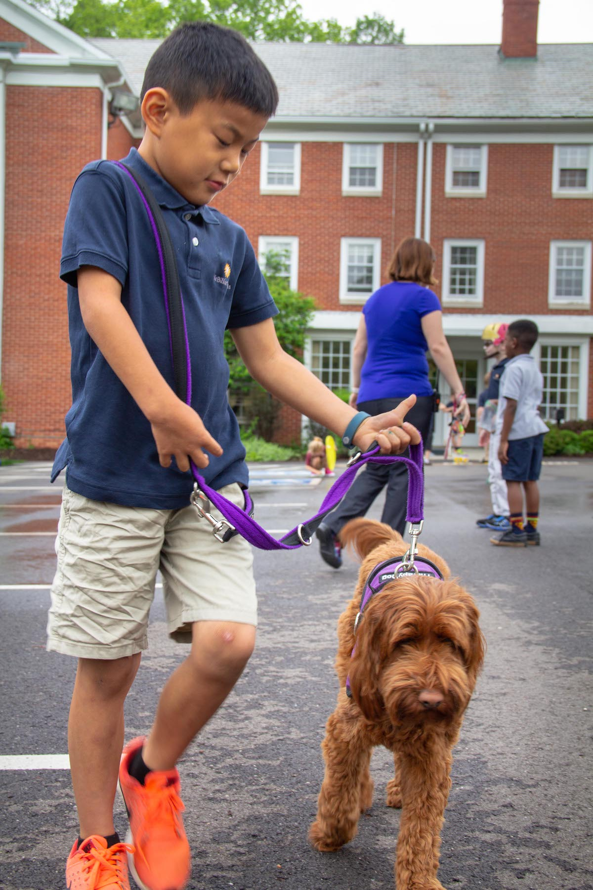 student in shorts walking a brown golden-doodle at julie billiart schools.