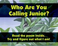 Who Are You Calling Junior?
